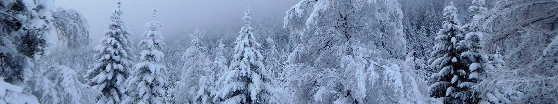 neige-collante-03-9057