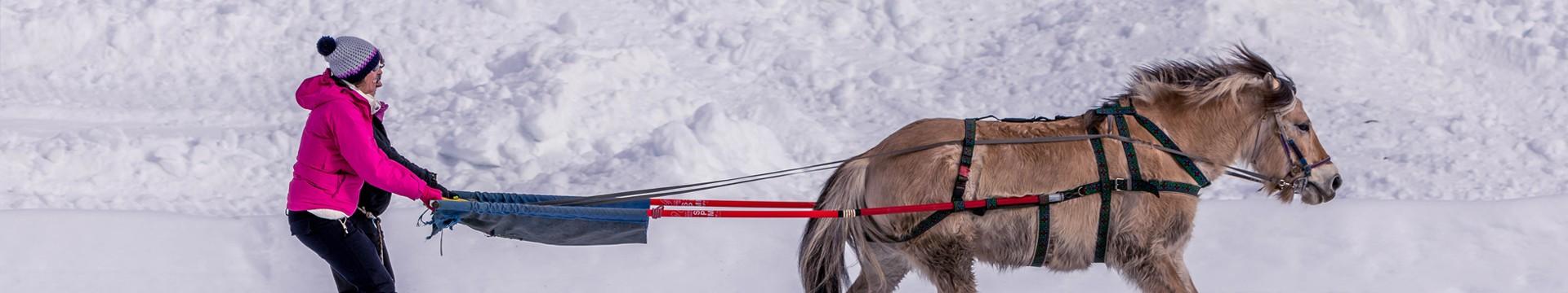 ski-joering-01-8993