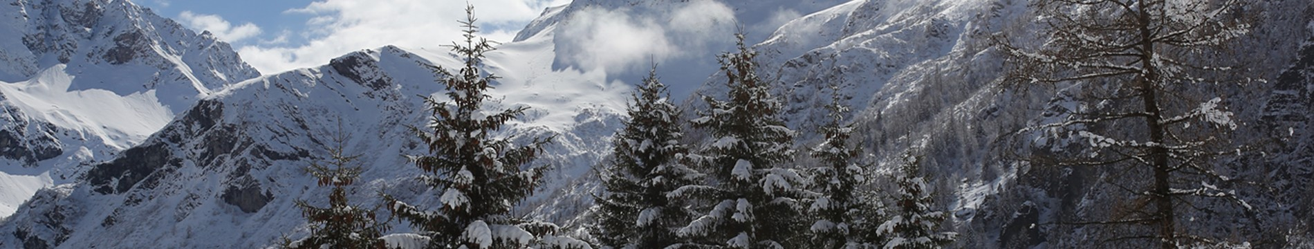 tetiere-ingenie-hiver-7-6961