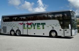 2 free shuttle buses