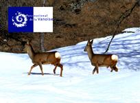 Le Parc national de la Vanoise