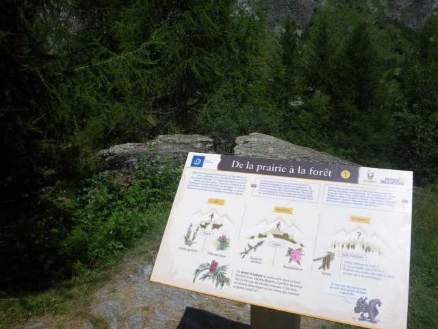 Themed trails