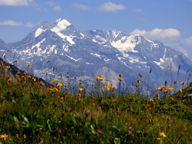 TMP : Tour du Mont Pourri