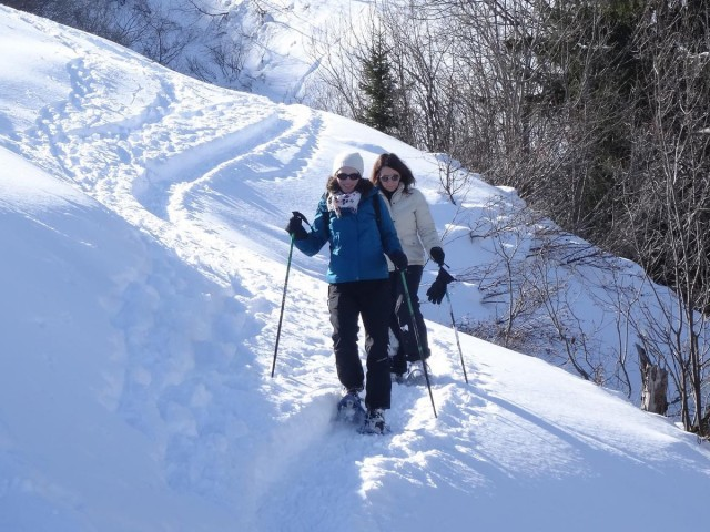 snowshoe or foot hicking