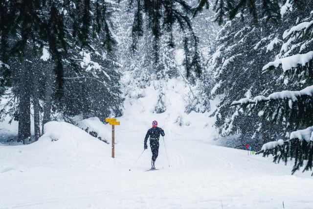 Espace nordique / Ski de fond