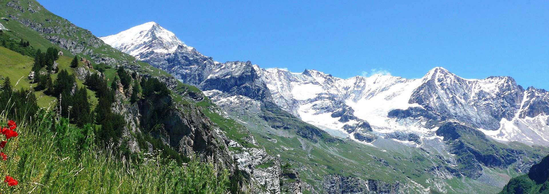 Vue sur les glaciers de Peisey