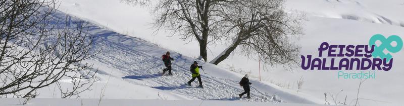 banniere-hiver-pv-marcheurs-pracompuet-942