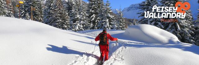 banniere-hiver-pv-moniteur-raquettes-940