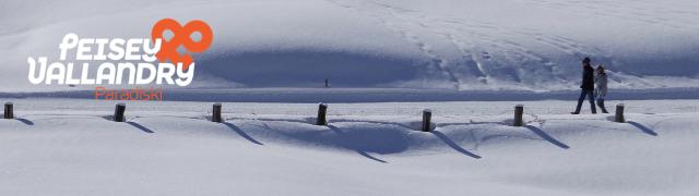 banniere-hiver-pv-pietons-neige-3-938