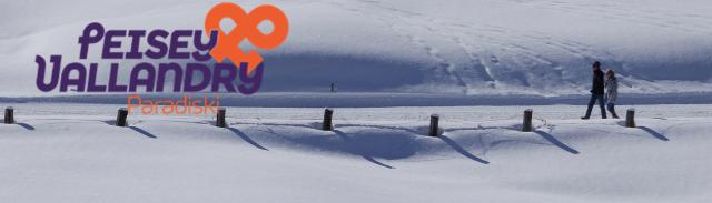 banniere-hiver-pv-pietons-neige-950