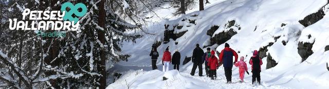 banniere-hiver-pv-promenade-famille-hiver-943