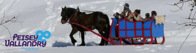 banniere-hiver-pv-traineau-a-cheval-1111