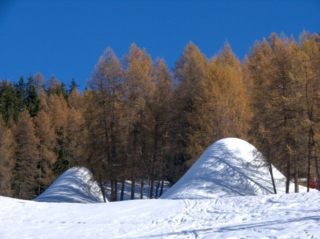 buttes-de-neige-et-foret-de-melezes-michailles