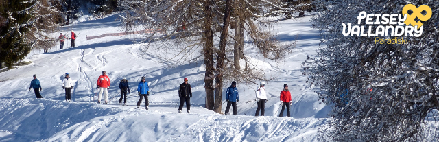 ski-alpin-foret-1097