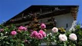 maison-gontharet-roses-gera-moulin-15-aout-2020-16-54196