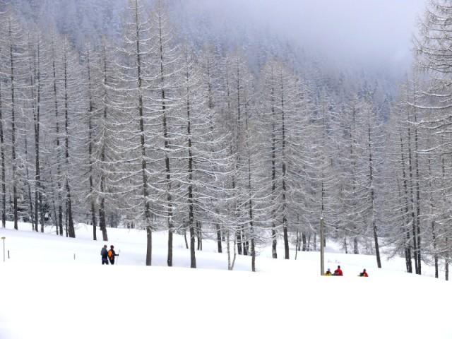 aventure-nordique-ski-de-fond-peisey-vallandry-59493